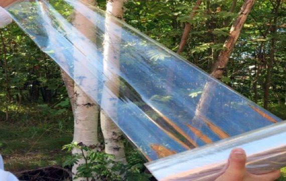 В Давосі віддали 1 млн доларів на розробку матеріалів, що замінять пластик