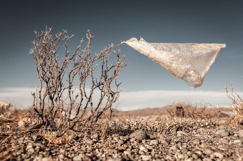 Підтримай петицію про обмеження обігу поліетиленових пакетів в Україні