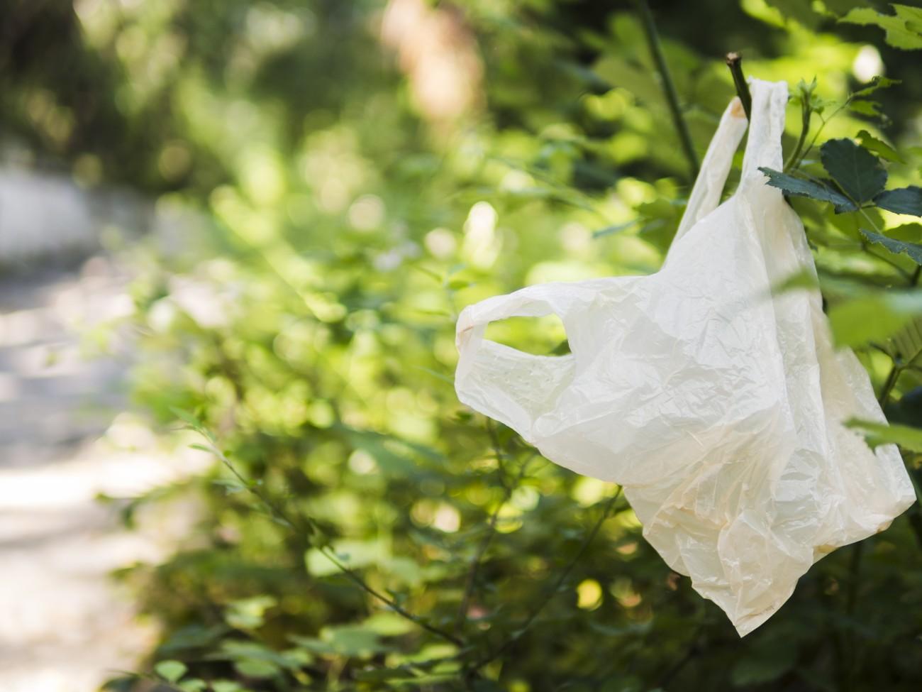 У Вірменії заборонять пластикові пакети з 1 січня 2022 року